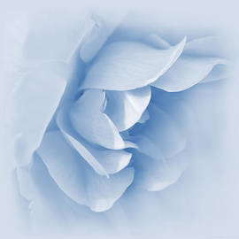 Jennie Marie Schell - Rose Flower Petals Soft Blue