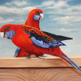 Mary Ann Fox - Rosellas