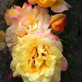 Chandana Arts - Roses