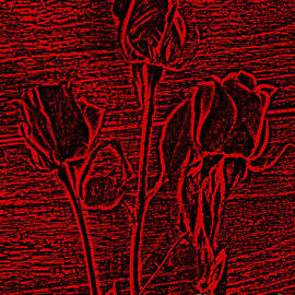 Adri Turner - Roses in Red and Black Textured Digitally Enhanced Photograph Art