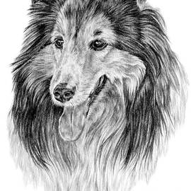 Denise Wood - Rough Collie