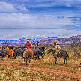 Priscilla Burgers - Rounding Up Cattle In Cornville Arizona