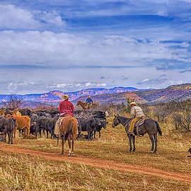 Priscilla Burgers - Rounding Up Cattle In Cornville Arizona