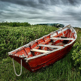 Nikolyn McDonald - Rowboat at Prospect Point - 2
