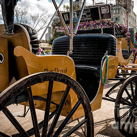 Kathleen K Parker - Royal Carriage and Mule New Orleans