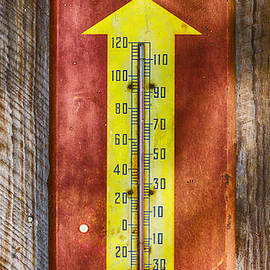 Carolyn Marshall - Royal Crown Barn Thermometer