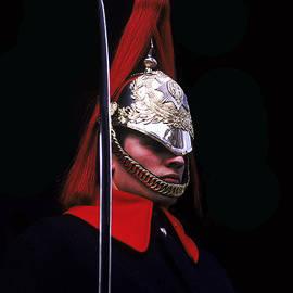 Stuart Harrison - Royal Guard