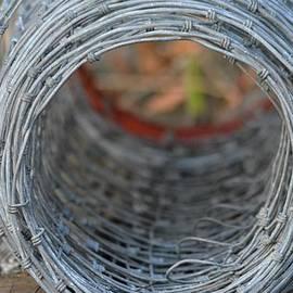 Patricia Twardzik - Rugged Wire Fencing
