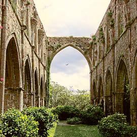 Menega Sabidussi - Ruins Abbaye de Beauport Paimpol Bretagne