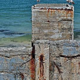 Susan Wiedmann - Ruins at Monterey Bay