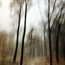 Randi Grace Nilsberg - Running Through the Woods