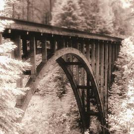 Leslie Wells - Mendocino Coast Bridge