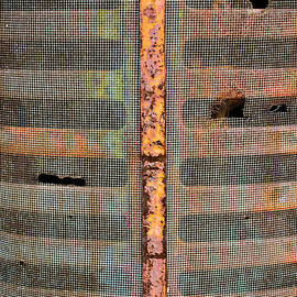 Colleen Kammerer - Rusted Grill - Abstract