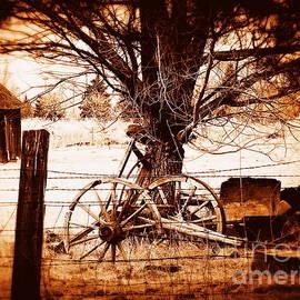 Bobbee Rickard - Rustic Times Gone by II