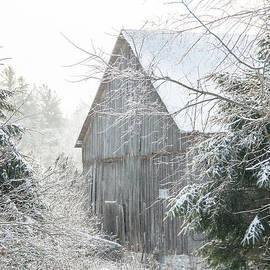Cheryl Baxter - Rustic Winter