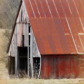 Lynn Sprowl - Rusty Ole Barn
