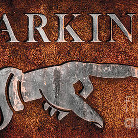 Gary Whitton - Rusty Vintage Iron Parking Sign Close-up