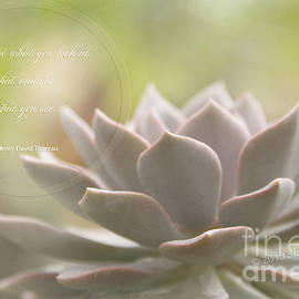 Sharon Mau - Sacred Garden