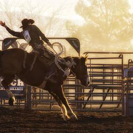 Priscilla Burgers - Saddle Bronc Riding at the Cottonwood Rodeo