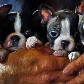 Jordan Blackstone - Safe In The Arms Of Love - Puppy Art