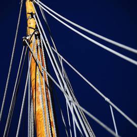 Karol Livote - Sailboat Lines