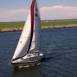 Pamela Patch - Sailing the Delta