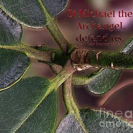 Jean OKeeffe Macro Abundance Art - Saint Michael The Archangel