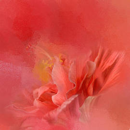 Jai Johnson - Salmon Hibiscus 3 - Floral