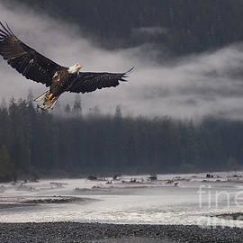 Stanza Widen - Salmon River Mist