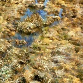 RC DeWinter - Saltmarsh Thaw