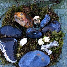 Colette V Hera  Guggenheim  - Samsoe Island Pure  Nature  Denmark