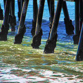 Mariola Bitner - San Clemente Pier