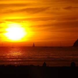 Rose Ann Fuller - San Diego Bay Silhouettes