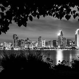 Lee Kirchhevel - San Diego Skyline Framed 2 Black and White