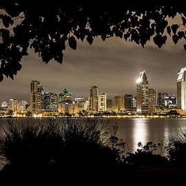 Lee Kirchhevel - San Diego Skyline Framed 2