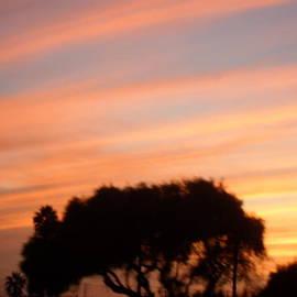 Val Oconnor - San Diego Sunset