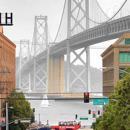 Daniel Furon - San Francisco Bay Bridge and Bay Quackers