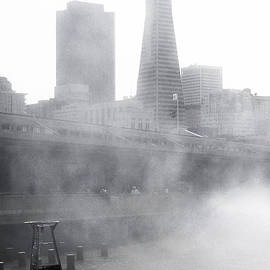 Amy Fearn - San Francisco Fog