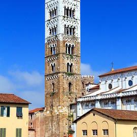 Valentino Visentini - San Martino Cathedral