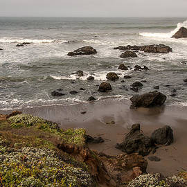 Lee Kirchhevel - San Simeon Beach