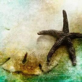 Barbara Chichester - Sand Dollar and Starfish