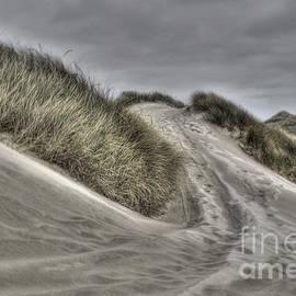 Shawn Dechant - Sand Dune Walk