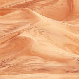 Roupen  Baker - Sand Dunes Pattern Abstract