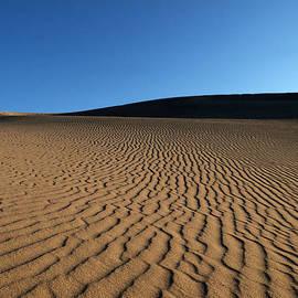 Joe Schofield - Sand Maps