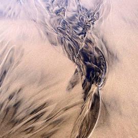 Newel Hunter - Sand Sculpture 61