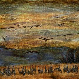 Barbara Manis - Sandhill Cranes