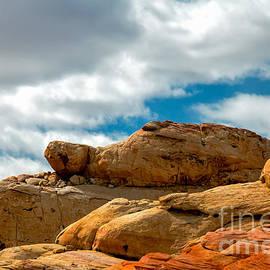 Robert Bales - Sandstone Tortoise