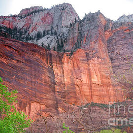 Robert Bales - Sandstone Wall in Zion