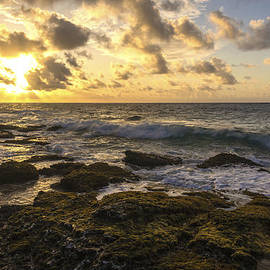 Brian Harig - Sandy Beach Sunrise 11 - Oahu Hawaii