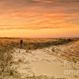 Sabine Jacobs - Sandy Road Leading to the Beach